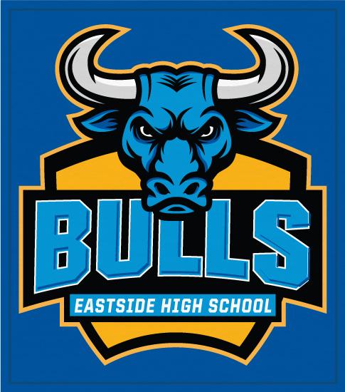 Bulls Mascot Spirit T-shirts