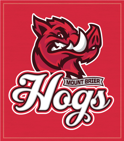Hogs School Spirit T-shirts